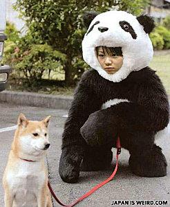 Le Japon est un pays bizarre ?