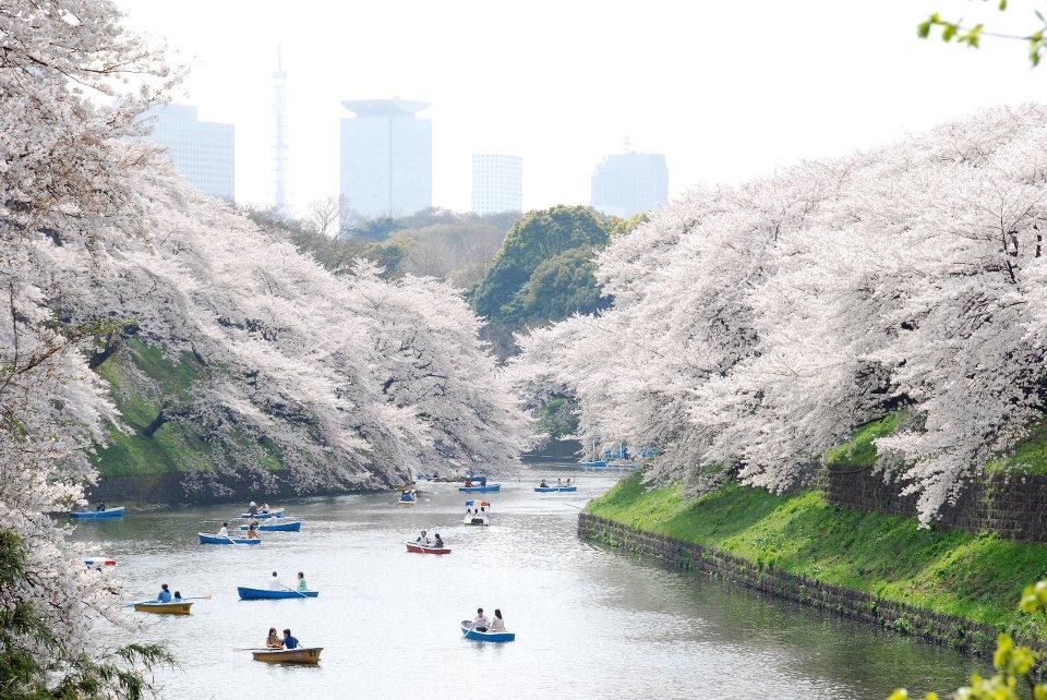 Nord de Tokyo