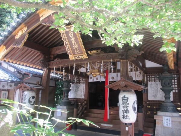 Temple caché entre les arbres