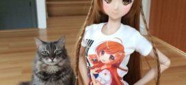 Smart dolls, la nouvelle génération de poupée.