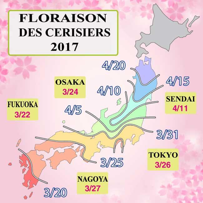 Floraison des cerisiers 2017 au japon le site du japon - Parc de sceaux cerisiers en fleurs 2017 ...