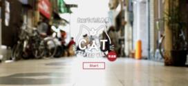CAT STREET VIEW, ça vous dit de voir la vie en chat ?
