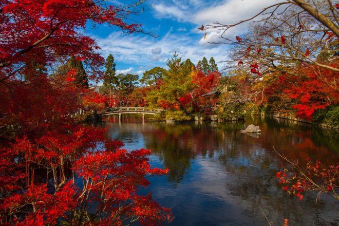 Le Jardin Japonais Le Site Du Japon