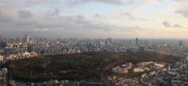 Image du jour : Parc Yoyogi & temple Meiji.