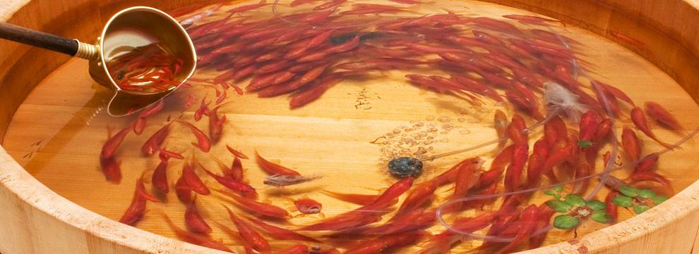 Riusuke fukahori le cr ateur du poisson d 39 or le site for Poisson rouge japonais